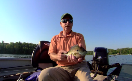 Spoon Strategies for Bluegills