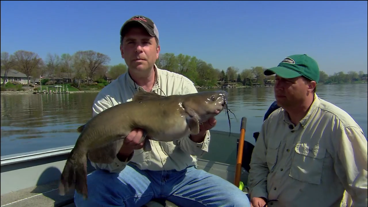 Awesome spring catfish tactic in fisherman for Ice fishing for catfish