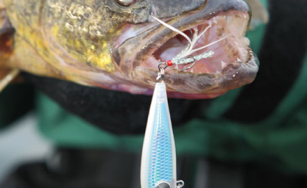 As the universe of walleye hardbaits continues to expand, it's helpful to define the various
