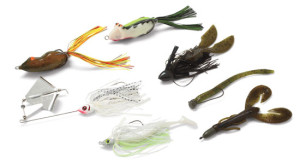 2015 Think Shallow for Big Bass