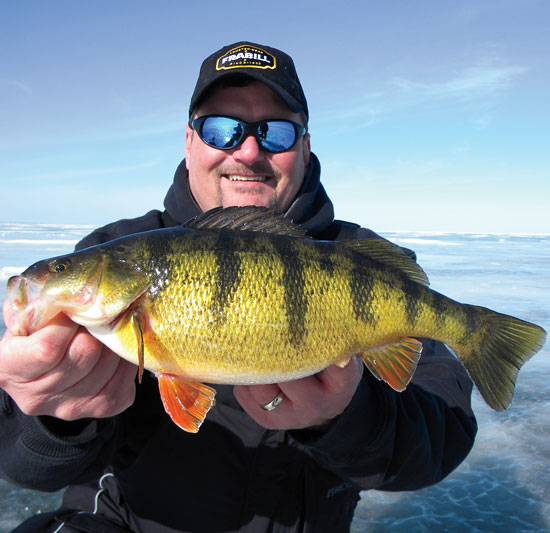 great lakes perch in fisherman