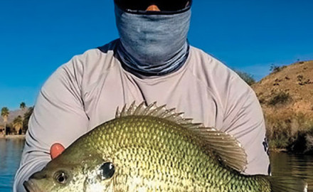If there's a more impressive fishing -portrait than Hector's Britto's 5-pound 13-ounce redear
