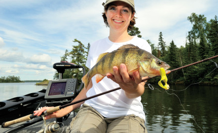 Sag-bellied perch topping a pound or two are prized catches. They're rare in most waters, but you