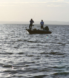 July Smallmouth Bass