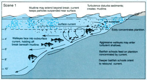 Principles of Wind and Walleyes