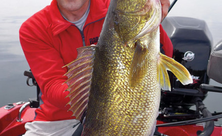 Summer walleye fishing on big water often involves using a mixed bag of trolling techniques to