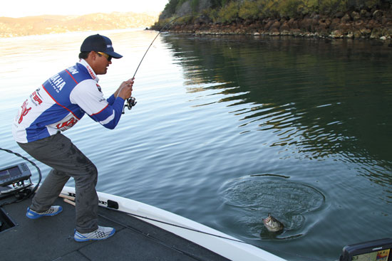 Light Line Tactics For Bass