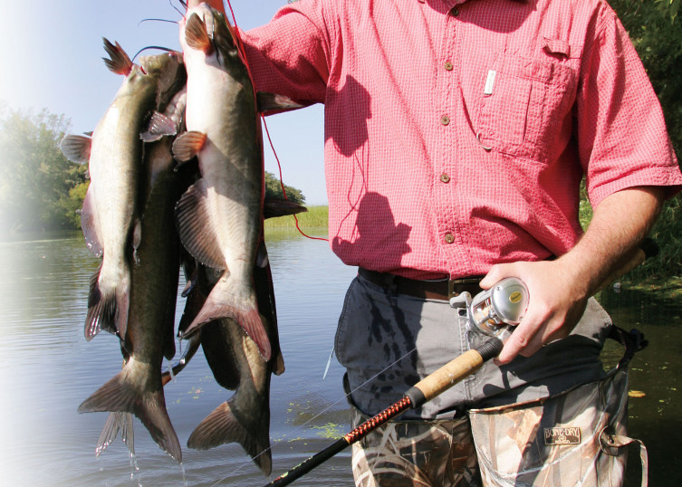 Catching catfish from shore in fisherman for Ice fishing for catfish