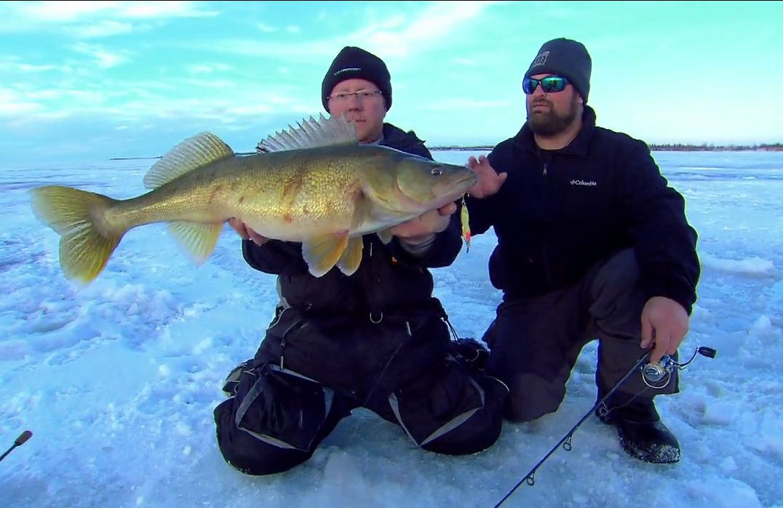 Ice fishing giant walleyes in fisherman for Ice fishing walleye videos