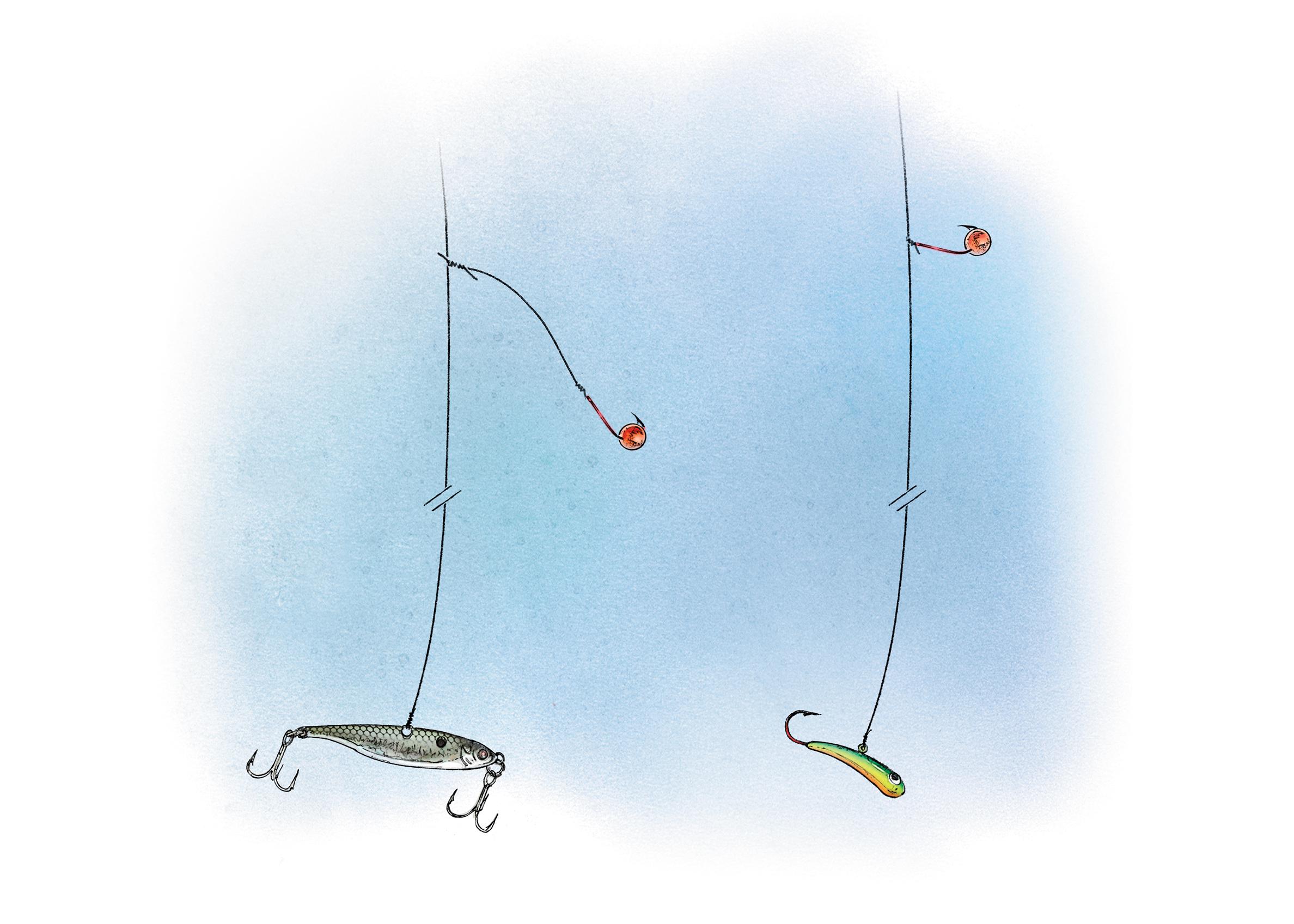 Ice fishing whitefish in fisherman for Ice fishing setup