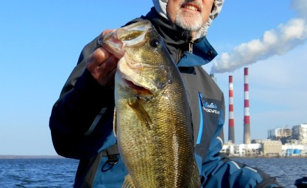 Bob Gum of Kansas City, Kansas, with one of the largemouth bass that he caught on Dec.