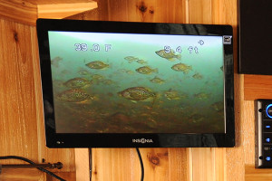 Ice Fishing Electronics