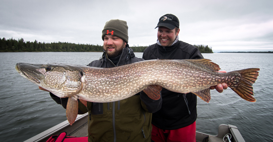 Programs for Spring Pike