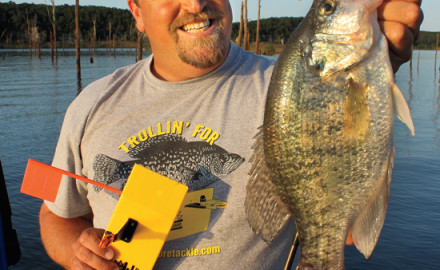 Planer Board Crappies