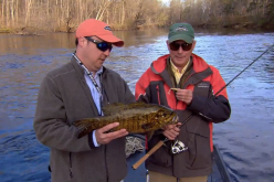 The In-Fisherman crew takes the mystery out of finding early season fishing patterns, as they reveal key grub choices for smallmouths.