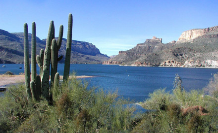 Apache Lake is a 17-mile long impoundment of the Salt River about 65 miles east of Phoenix.
