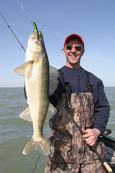 Walleye Length To Weight Conversion Chart