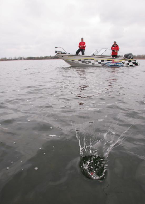 Giant Walleye Spots