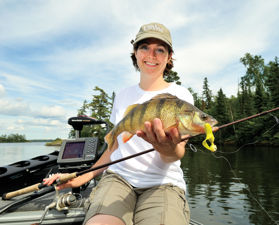 Best places for jumbo perch in fisherman for Yellow perch fishing secrets