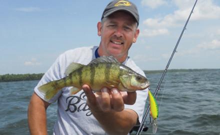 Perch fishing in fisherman for Yellow perch fishing rigs