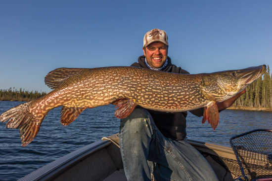 Canadian Pike Perspectives