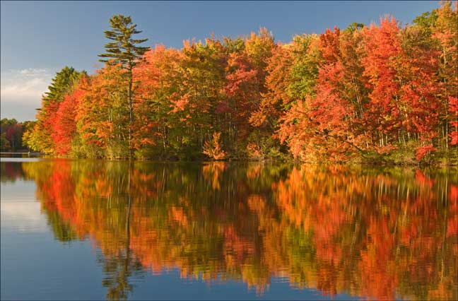 //www.in-fisherman.com/files/2016/09/maine-foliage-8.jpg