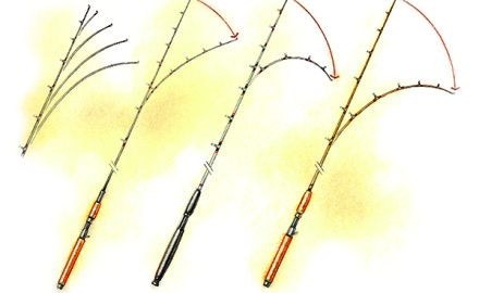 When it comes to selecting a rod blank for your custom rod, options are nearly endless.