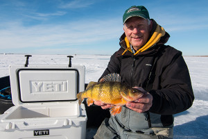 South Dakota Jumbo Perch