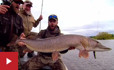Alaska is a dream destination, the more so for anglers seeking the Yukon River pike – biggest