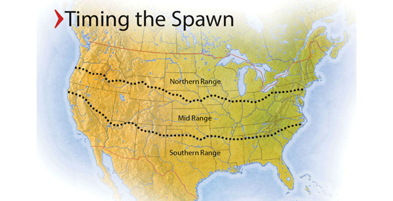 Spring Crappie Map