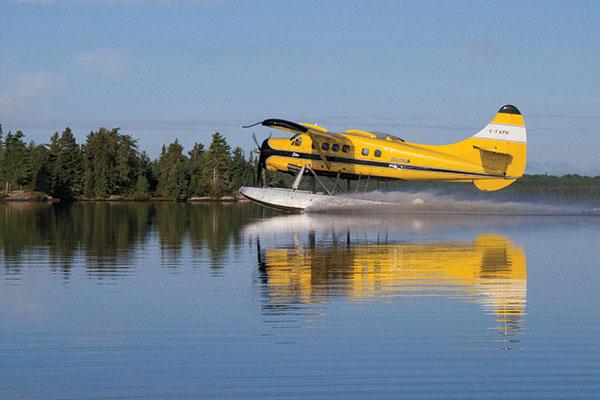 Walleye Fly Ins