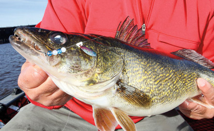 If you're looking for a revolutionary, headline-grabbing new walleye tactic that's sure to raise
