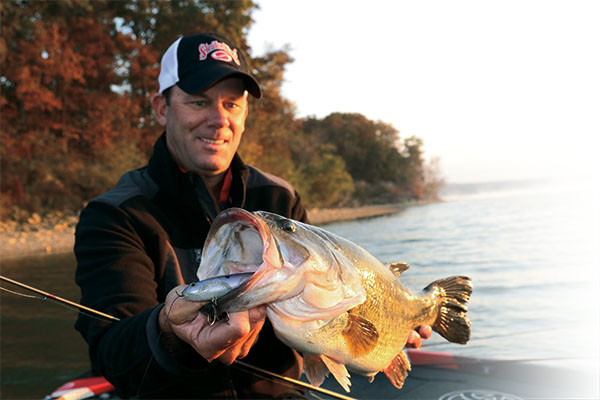 Large Lures for Spring Bass