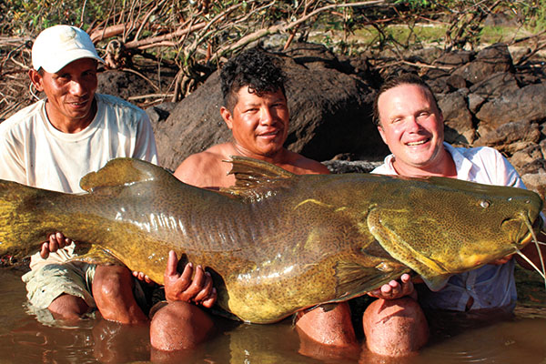 Jau Giant Catfish
