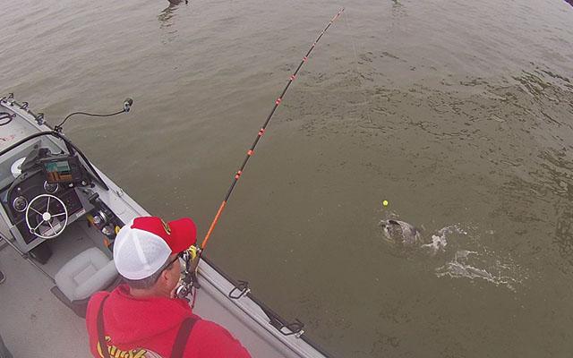 Drifting-Methods-for-Early-Season-Catfishing