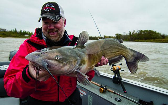 Locating-Shad-When-Early-Season-Catfishing