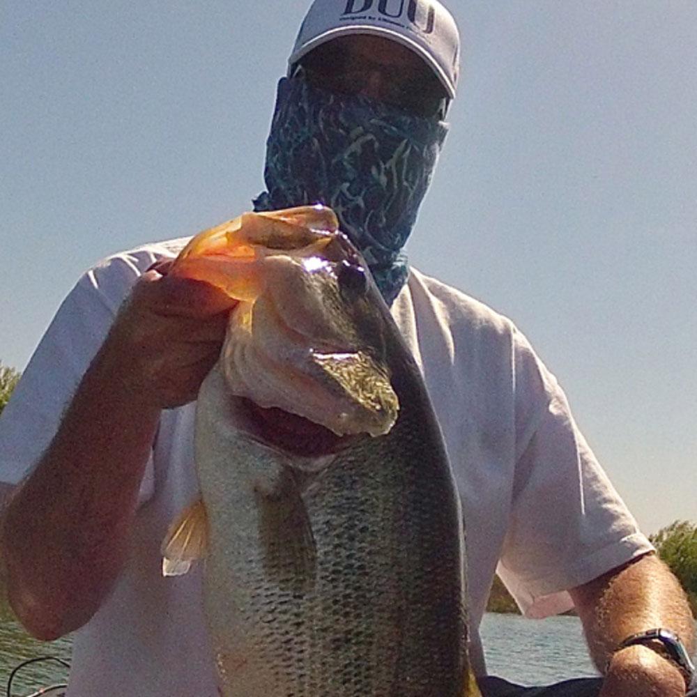 Best Bass Fishing States California