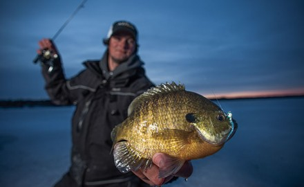 Proliferation of panfish plastics useful to ice fishermen has gone off-the-charts bonkers. If the