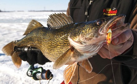 Top-Performing-Ice-Lures