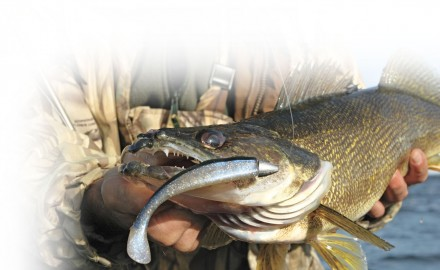 Paddletail-Swimbaits-for-Walleyes