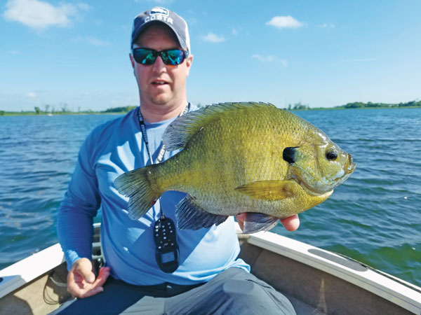 Finding the Biggest Bluegills