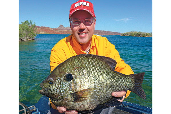 Panfish Hotspots in Arizona