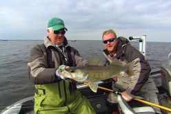 Postspawn Walleye Patterns
