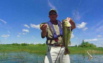 Doug Stange reveals tricks for finicky postspawn largemouths.