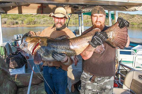 Top destinations for trophy flathead catfish in fisherman for Lake pleasant fishing report