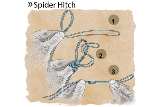 //www.in-fisherman.com/files/catfish-knots/spider-hitch-in-fisherman.jpg