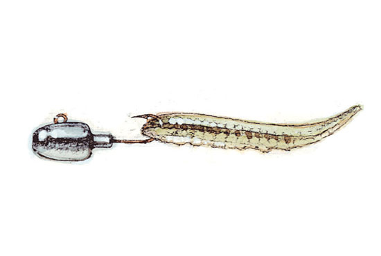 //www.in-fisherman.com/files/catfish-rigs-and-tackle/leadhead-jig-option-b-in-fisherman.jpg