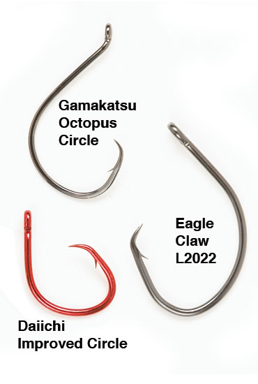 //www.in-fisherman.com/files/circle-hook-situations/livebaits-for-flatheads-hooks-in-fisherman.jpg