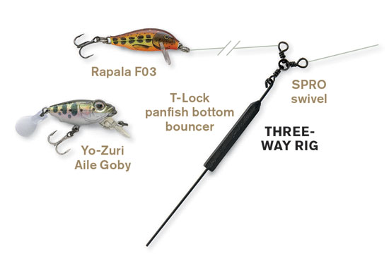 //www.in-fisherman.com/files/deep-panfish-tools/three-way-rig-in-fisherman.jpg