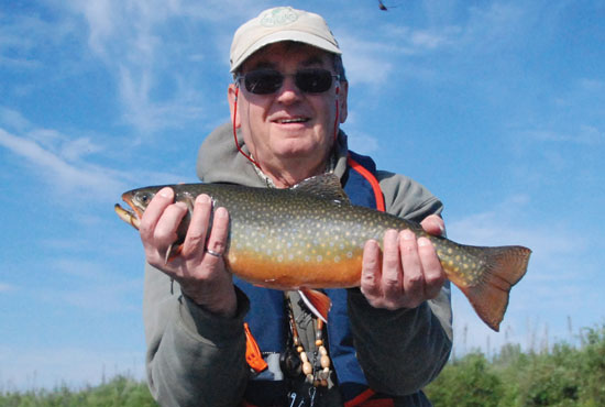 //www.in-fisherman.com/files/master-angler-2013/brook-trout-barry-tocher-20-inches-in-fisherman.jpg